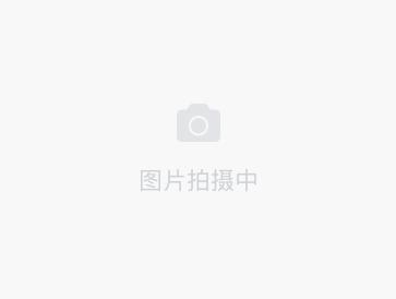 /zufang/SH2190445330997452800.html