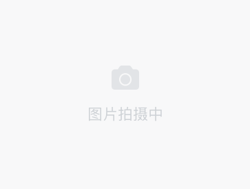 /zufang/SH2205290700462374912.html